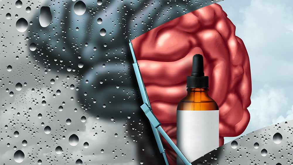 CBD bottle and the brain