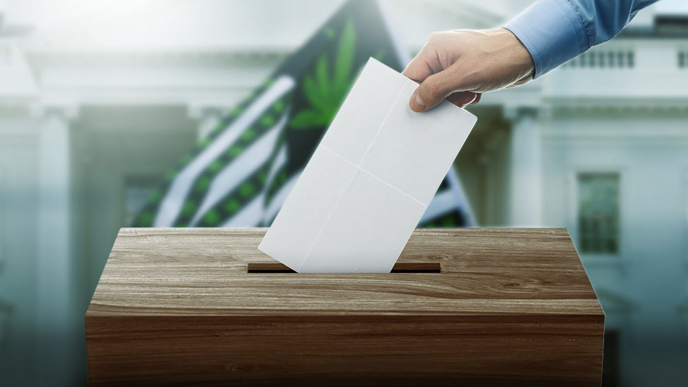 Hand putting a vote in a slot