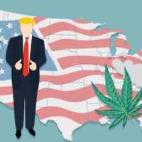 Report: Trump troubled by pot legalization votes this November
