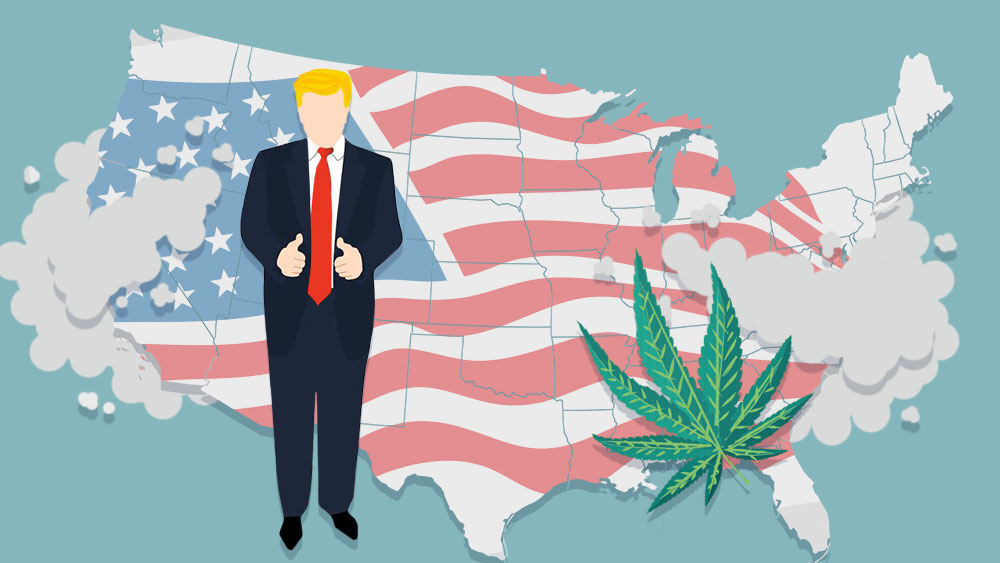 Illustration of Donald Trump, map of the U.S. and cannabis leaf.