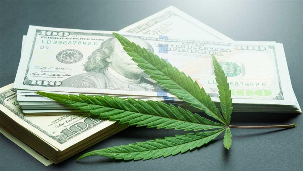Cannabis leaf and dollar bills