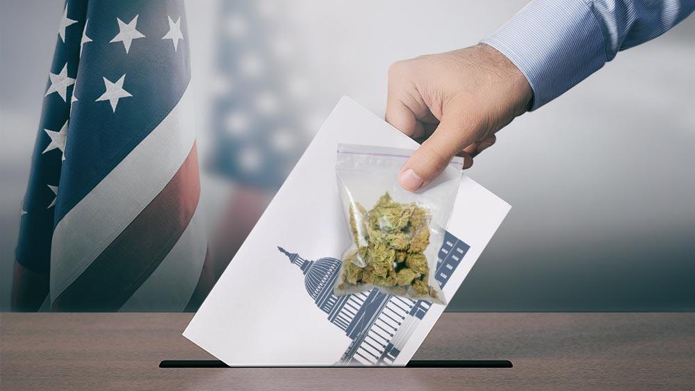 Hand slipping a voting slip inside a box