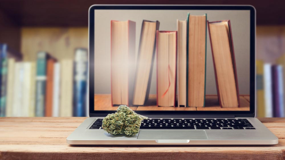 Books on a computer screen, and weed on the keyboard