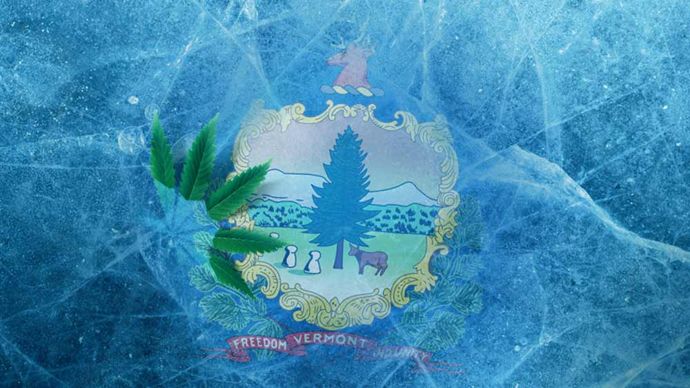 Vermont flag and cannabis leaf